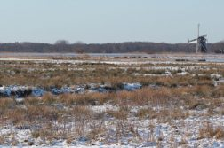 Foto: Het Groninger Landschap Marja Kiers